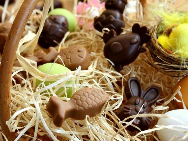 chocolats de p ques au thermomix cookomix. Black Bedroom Furniture Sets. Home Design Ideas