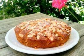 Gâteau moelleux aux abricots au Thermomix