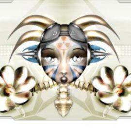 Illustration du profil de loukoum062b