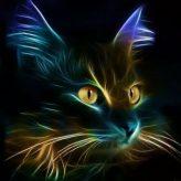 Illustration du profil de Orlane23