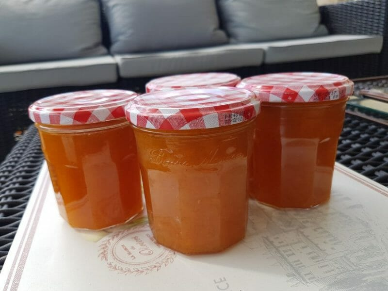 confiture abricot thermomix trop liquide