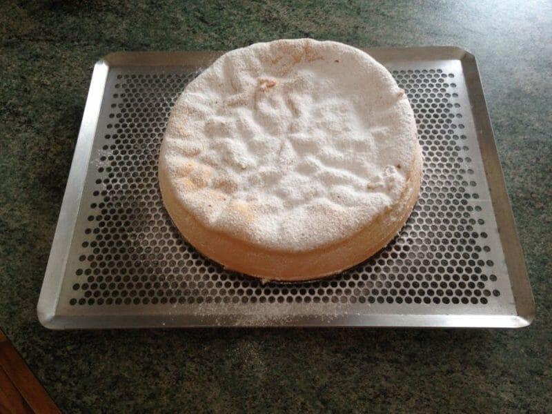 Recette gateau de savoie sans fecule de pomme de terre
