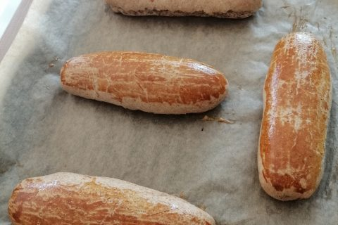 Pain à hot-dog au Thermomix