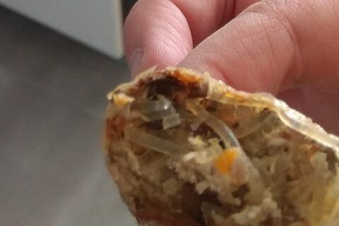 Nems au poulet Thermomix par cindy26750