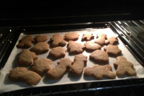 Biscuits pain d'épices de la Saint Nicolas Thermomix par butterflo