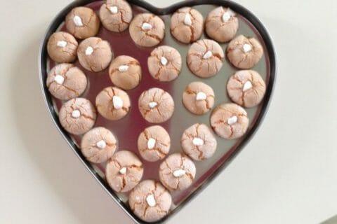 Craquelés aux biscuits roses de Reims Thermomix par Pat57