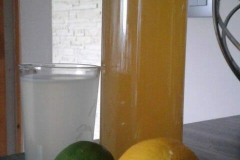 Sirop de citron Thermomix par Malain