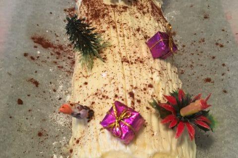Bûche de Noël framboises et chocolat blanc Thermomix par Streak