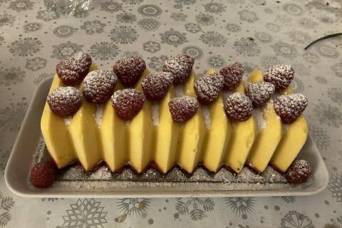 Bûche glacée mangue et framboise au Thermomix