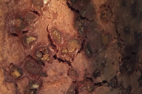 Brownies Thermomix par SCSC