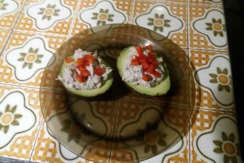 Avocats aux rillettes de thon au basilic Thermomix par malta