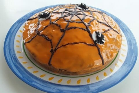 Gâteau zébré Thermomix par Dany33