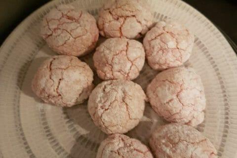 Craquelés aux biscuits roses de Reims Thermomix par isabl