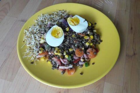 Salade de lentilles Thermomix par Jluc