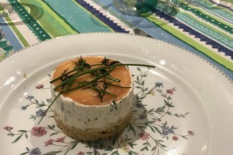 Cheesecake au saumon sans cuisson Thermomix par Nimaux