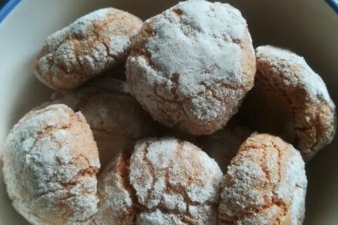 Craquelés aux biscuits roses de Reims Thermomix par Verolily