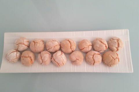 Craquelés aux biscuits roses de Reims Thermomix par Cocobistouille