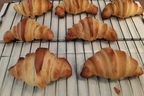 Croissants Thermomix par Jomaze