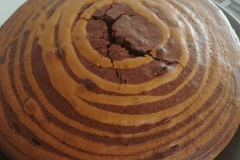 Gâteau zébré Thermomix par Jennydenizet40