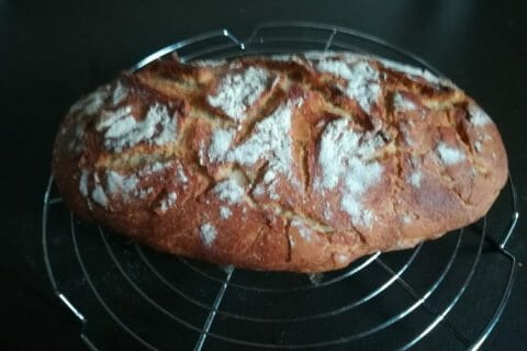 Pain Cocotte Thermomix par Dobbyplym
